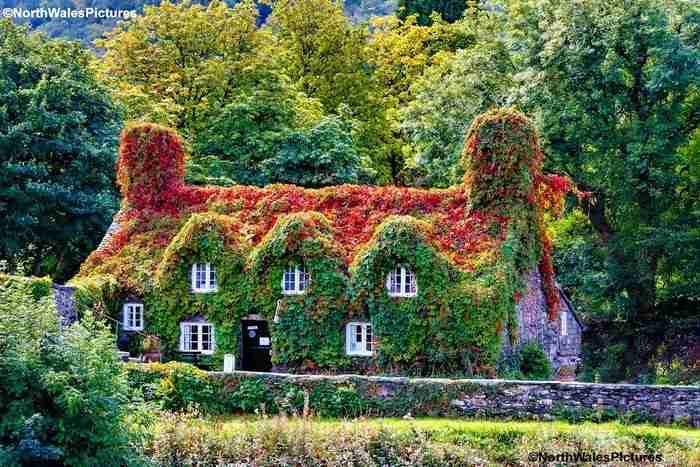 Αυτό το απίθανο κτίριο μετρά 632 χρόνια ζωής. Είναι τεϊοποτείο, βρίσκεται στην Αγγλία και θυμίζει παραμύθι
