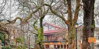 Ξεχάστε την Αράχωβα και ανακαλύψτε ένα πανέμορφο χωριουδάκι δίπλα της γεμάτο πηγές, αιωνόβια πλατάνια, φτελιές και έλατα!