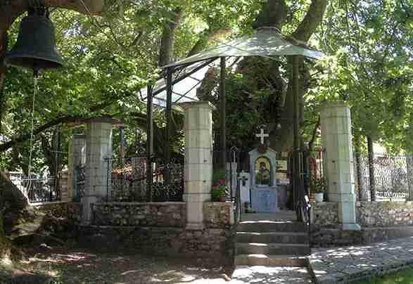 Μοναδικό στην Ελλάδα: Το Εκκλησάκι της Παναγίας που βρίσκεται μέσα σε έναν τεράστιο πλάτανο!