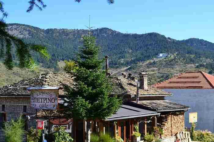 Το παραμυθένιο Ελληνικό χωριό, κρυμμένο μέσα σε χιλιάδες στρέμματα δάσους, που δεν έχει ούτε έναν άνεργο!