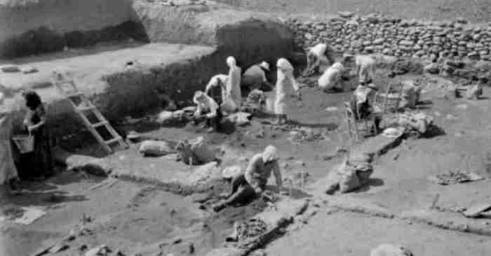 Κουμανταρία: Το αρχαιότερο κρασί στον κόσμο παράχθηκε στη Λεμεσό το 3500 π.Χ και βρέθηκε σε όλα τα βασιλικά τραπέζια της Ευρώπης