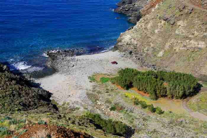 Η «τροπική» ζούγκλα της Ελλάδας: Αιωνόβια δέντρα που κρύβουν το φως, κληματσίδες, κισσοί, λίμνες και πανέμορφοι καταρράκτες