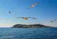 Ένα νοσταλγικό ταξίδι στα Πριγκηπονήσια: Μνήμες και ιστορία μέσα από υπέροχες εικόνες
