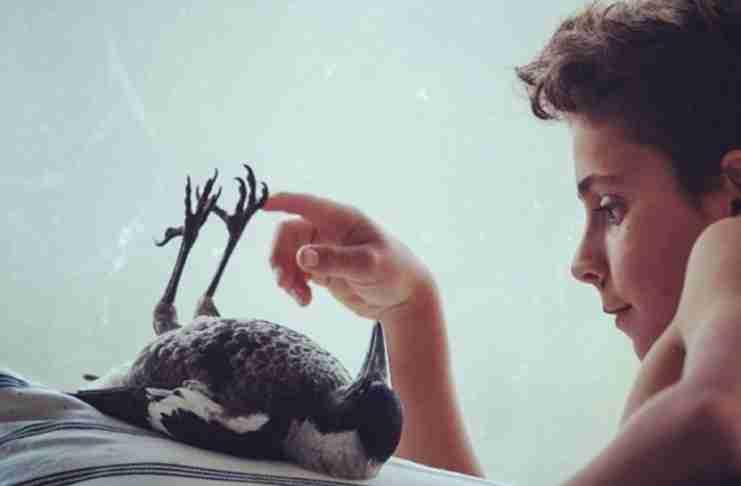 Μεγαλώνοντας ένα ευγενικό παιδί σ' ένα κόσμο που δεν λέει «ευχαριστώ»