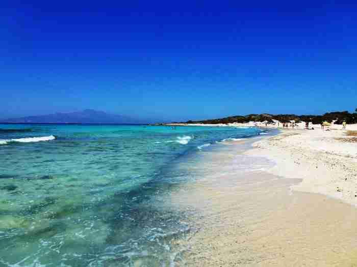 Το διαμάντι του Νότου: Το ακατοίκητο ελληνικό νησάκι με το μεγαλύτερο φυσικό κεδρόδασος της Ευρώπης και τα αμέτρητα κοχύλια!