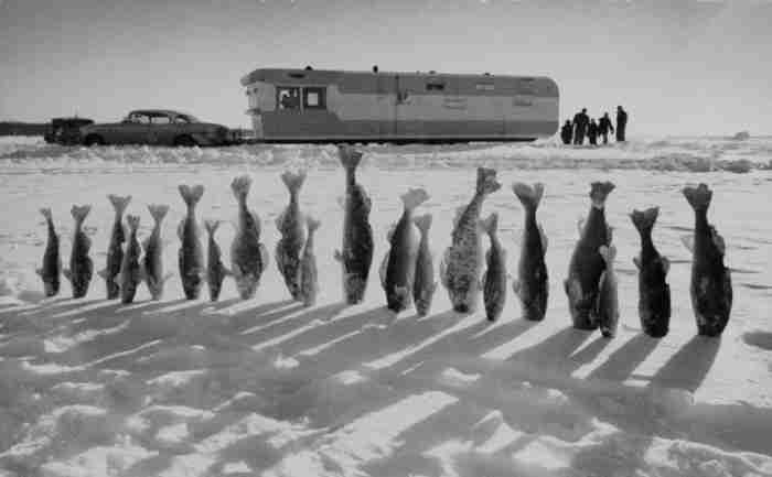 35 αριστουργηματικές φωτογραφίες του National Geographic που δεν είδαν ποτέ το φως της δημοσιότητας