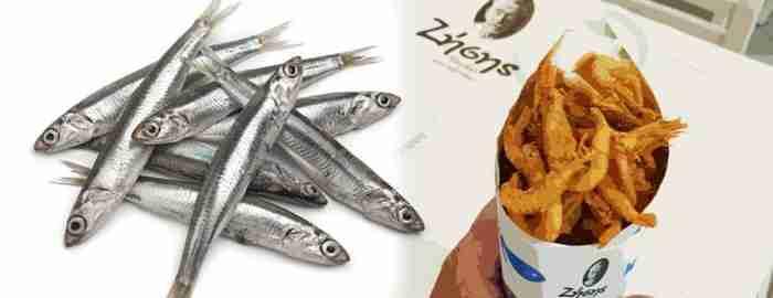 «Ζήσης»: Εδώ τρως ψαράκι στο χωνάκι και παίρνεις ρέστα από πεντάευρο
