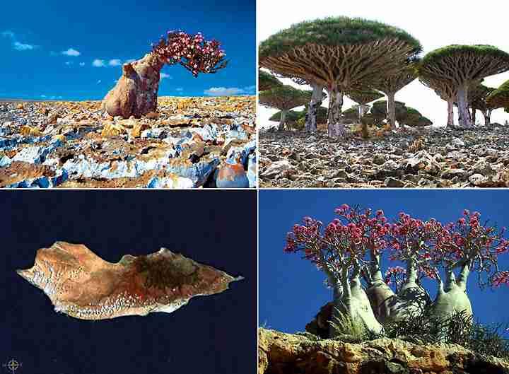 dinfo.gr - dinfo.gr - Η ομορφιά της φύσης μέσα από 30 μοναδικές φωτογραφίες