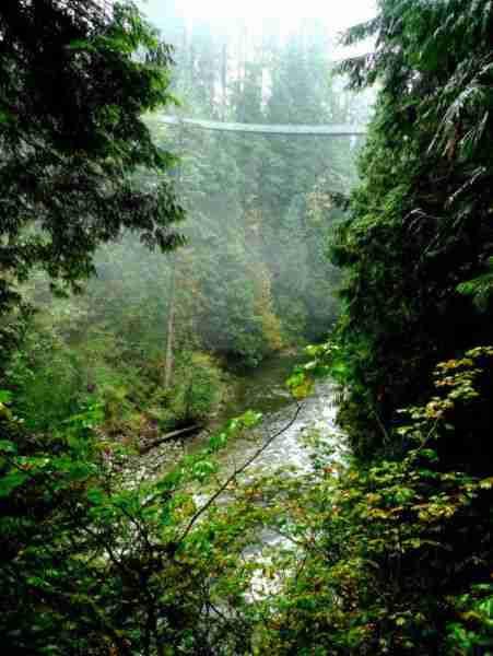 Capilano Bridge