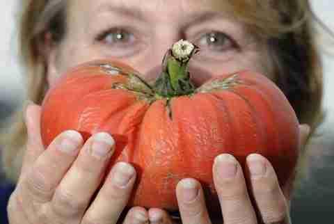 Τεράστια φρούτα και λαχανικά
