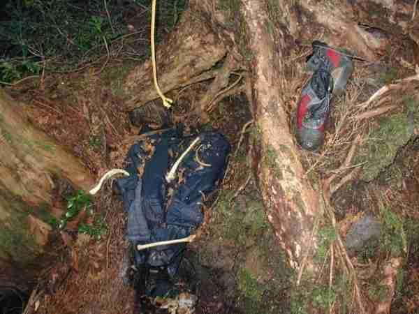 Aokigahara Forest, το δάσος των αυτοκτονιών