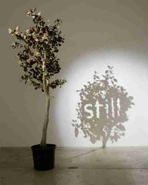 """""""Τέχνη των σκιών"""" του Fred Eerdekens"""