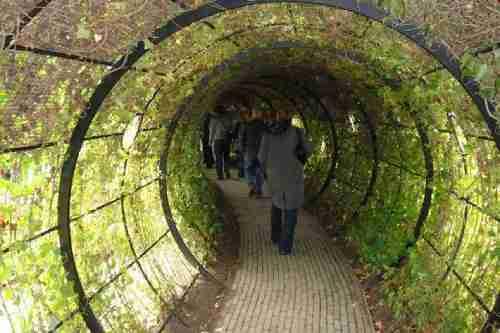 Ο δηλητηριώδης κήπος του Alnwick