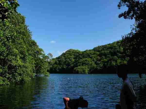 Η λίμνη με τις μέδουσες