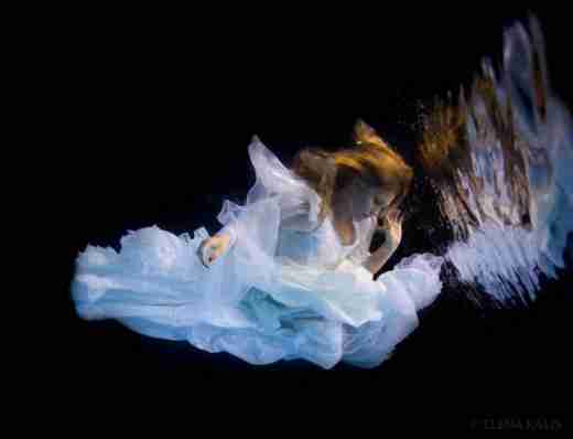 Φωτογραφίες κάτω από το νερό της Elena Kalis
