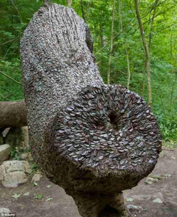 """Τα """"δέντρα των ευχών"""" στην Μεγάλη Βρετανία"""