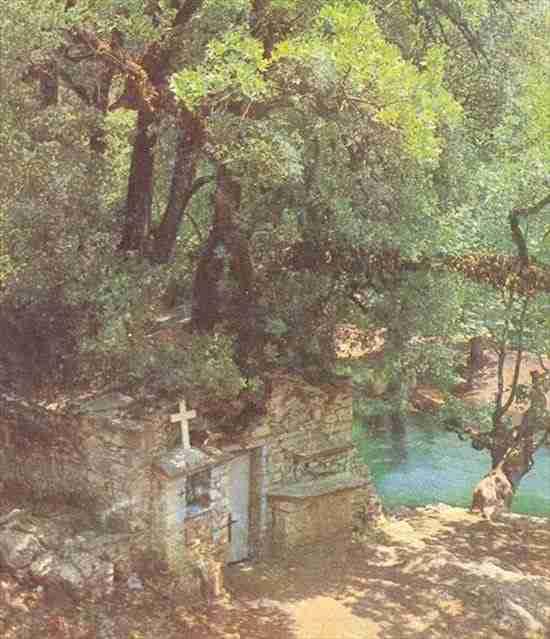 Το παράξενο εκκλησάκι με τα δένδρα