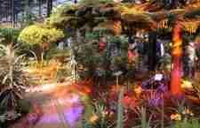 Κοσμοβιτράλ, ο κήπος με τα βιτρώ