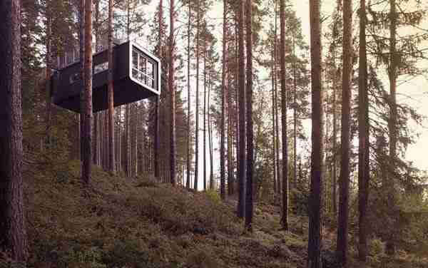 Treehotel, ένα ξενοδοχείο πάνω στα δέντρα!