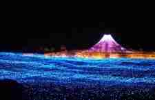 Nabano No Sato, το φεστιβάλ του φωτός