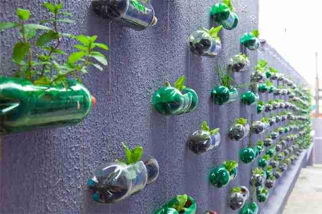Κατακόρυφος κήπος από εκατοντάδες πλαστικά μπουκάλια
