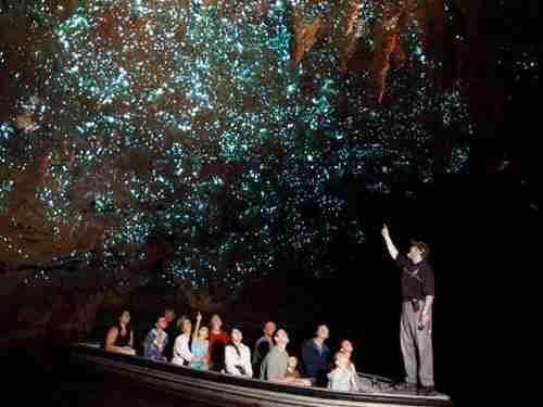 Waitomo Glowworm, χιλιάδες αστέρια πολλά μέτρα κάτω από τη Γη