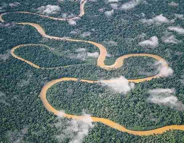 Δάσος Tambopata, Περού