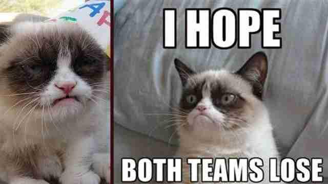 Grumpy cat, η πιο γκρινιάρα γάτα στο κόσμο!