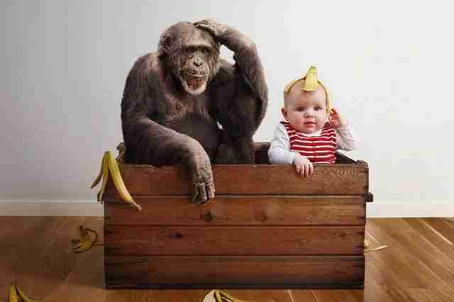 Πατέρας φωτογραφίζει τη κόρη του σε αστείες καταστάσεις