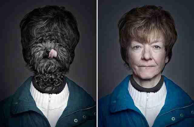 Σκύλοι ντυμένοι όπως τα αφεντικά τους!