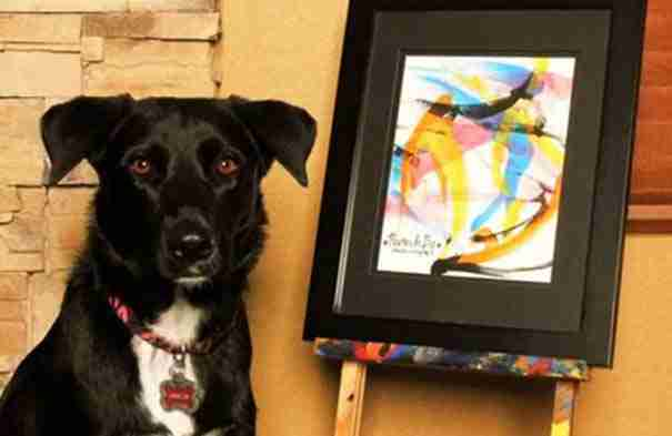 Γνωρίστε την Arbor, τον σκύλο που ζωγραφίζει!