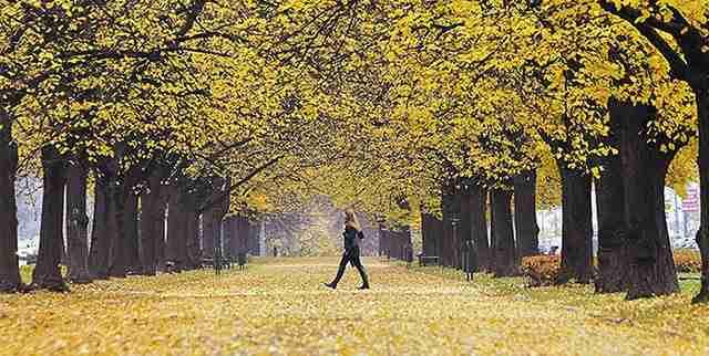 dinfo.gr - Ο γύρος του κόσμου σε 20 πανέμορφα φθινοπωρινά τοπία