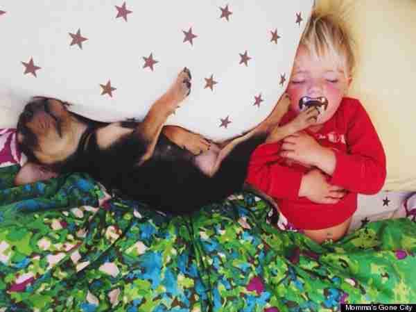 dinfo.gr - Μια υπέροχη ιστορία αγάπης και.. ύπνου