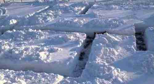 dinfo.gr - Άνθρωπος και σκύλος παίζουν κρυφτό στο χιόνι
