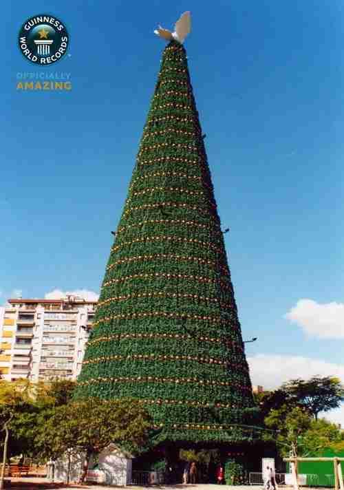 dinfo.gr - Η ιστορία των χριστουγεννιάτικων δένδρων