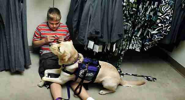 dinfo.gr - 20 λόγοι για τους οποίους επιβάλλεται να αποκτήσετε σκύλο