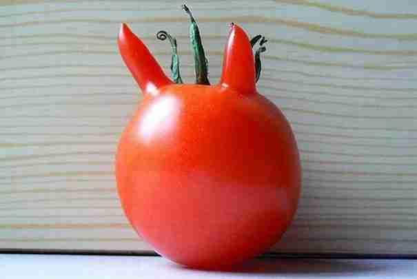 dinfo.gr - 15 φρούτα και λαχανικά σε απίθανα σχήματα!