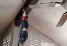 dinfo.gr - Πατέρας μετατρέπει τα βίντεο του παιδιού του σε εκπληκτικές σκηνές δράσης!