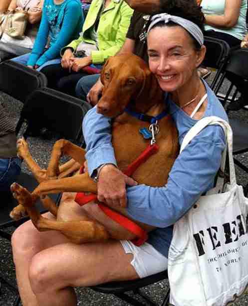 dinfo.gr - Όταν ένας οδηγός παρέσυρε μια γυναίκα στο δρόμο, ο σκύλος της έφυγε πανικόβλητος. Το τι συνέβη στη συνέχεια μοιάζει απίστευτο!