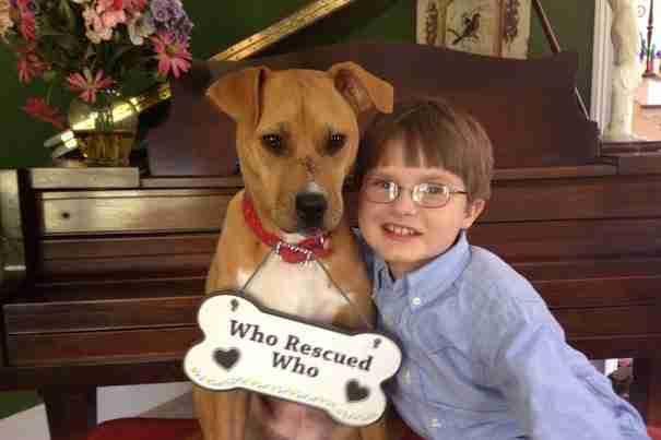 Η όμορφη ιστορία ενός αγοριού με το σκύλο του είναι ότι πιο όμορφο θα διαβάσετε σήμερα!