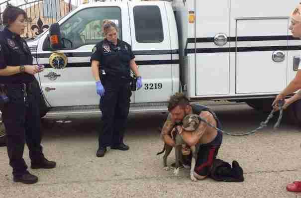 Η συγκινητική στιγμή που ένας άστεγος άντρας συνάντησε ξανά τον σκύλο του!