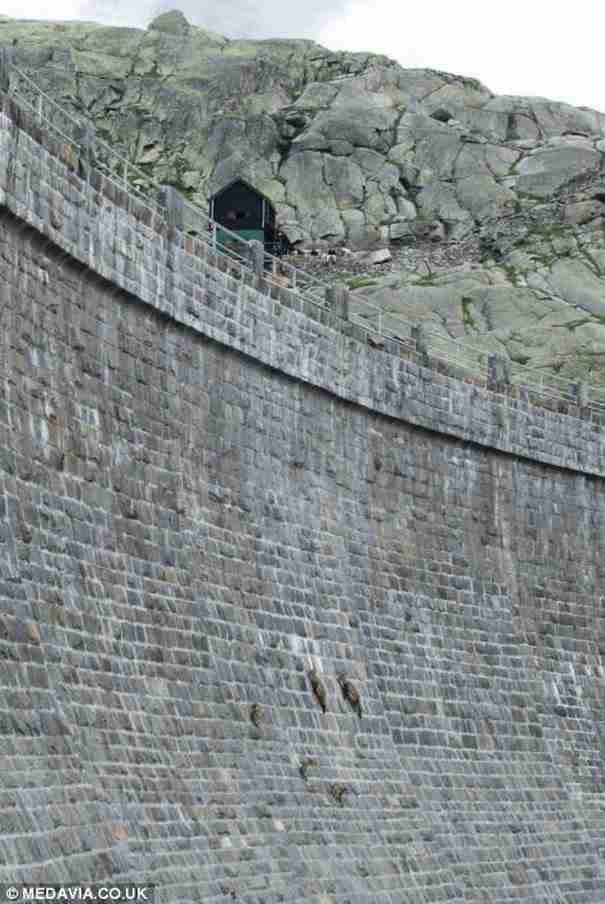 Μα τι είναι αυτές οι κουκκίδες πάνω στον τοίχο; Αυτό πρέπει να το δείτε..