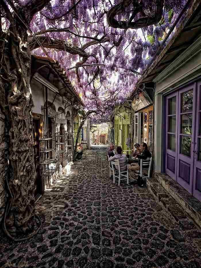 # 1 Μόλυβος, Λέσβος, Ελλάδα