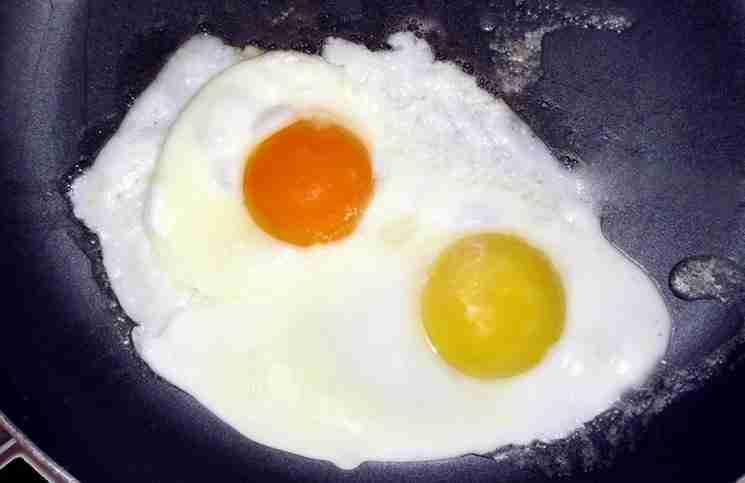 Ποιος από τους παρακάτω κρόκους αυγών σας φαίνεται πιο φυσιολογικός;