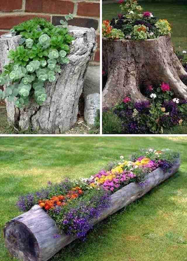 Δημιουργήστε μια μεγάλη γλάστρα από έναν κορμό δέντρου