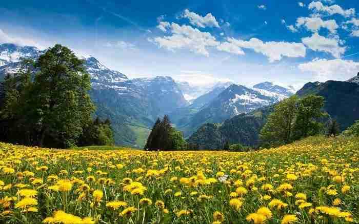 Braunwald, Ελβετία