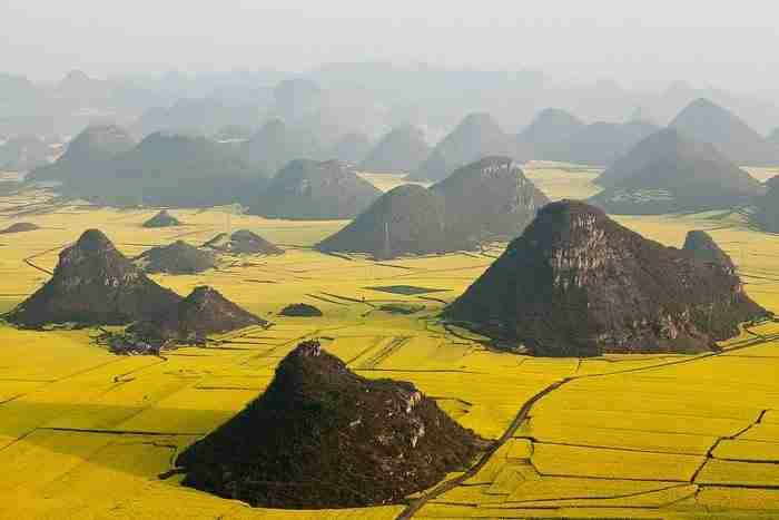 Πεδιάδα λουλουδιών Canola, Γιουνάν, Κίνα