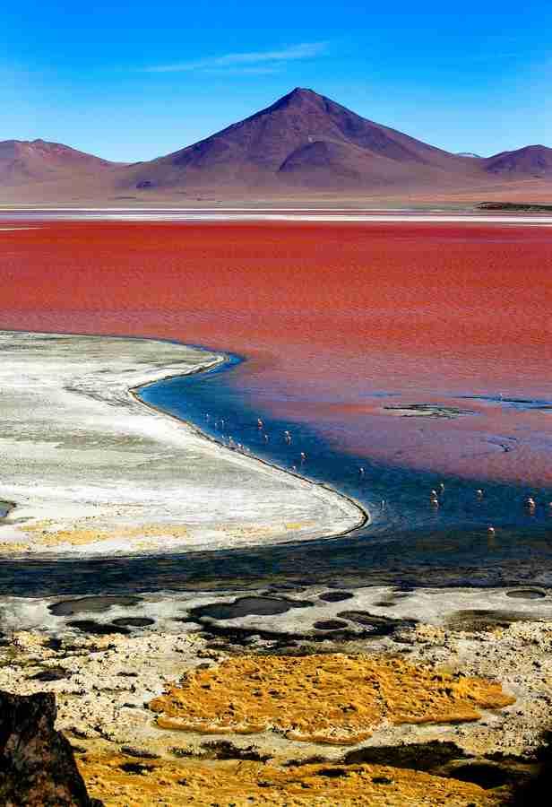 Λαγκούνα Κολοράντα, Βολιβία