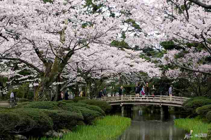 Καναζάβα, Ιαπωνία