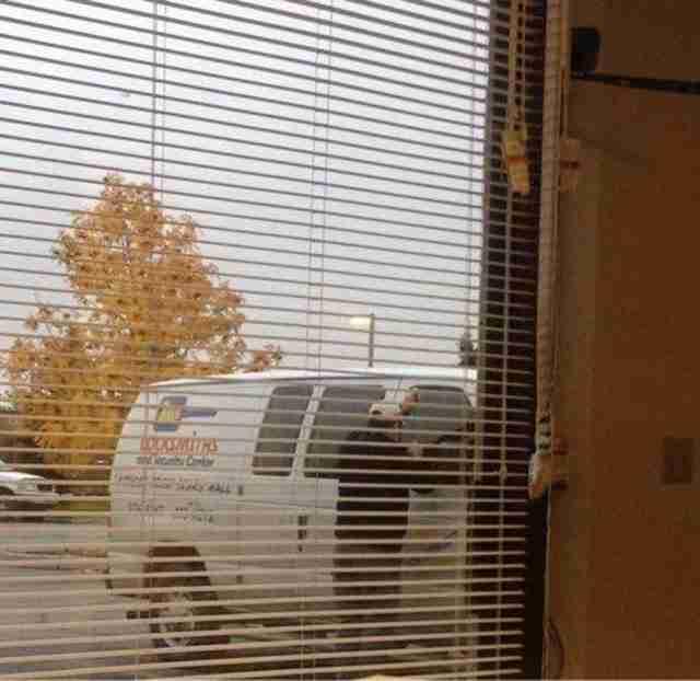 Όταν ο κλειδαράς που κάλεσες να σου ανοίξει την πόρτα σου, κλειδώθηκε έξω από το αυτοκίνητο του!